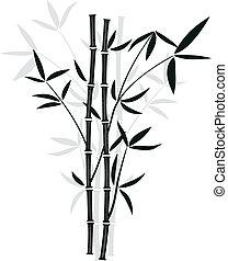 vektor, bambus