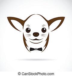 vektor, bild, von, ein, chihuahua, hund