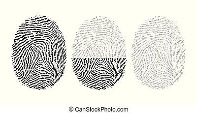 vektor, binær kode, bestå, fingeraftryk