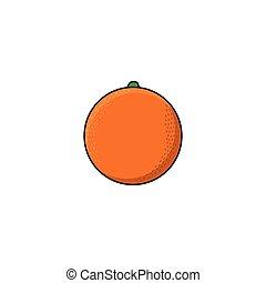vektor, byt, skica, móda, čerstvý, zralý, pomeranč