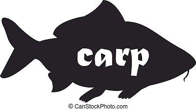 vektor, carp., schwarz, fische, weißes, hintergrund., zeichnung, freigestellt, silhouette, karpfen