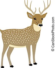 vektor, cute, deer., illustration