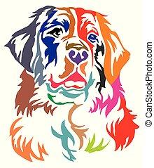 vektor, dekorativ, porträt, bunte, berner senn hund, abbildung, berg