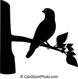vektor, design, vogel, zweig