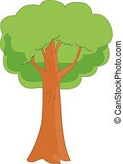 vektor, eg træ