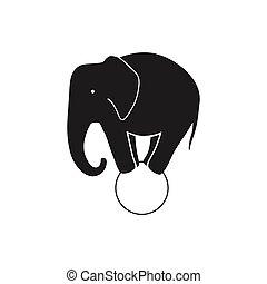 vektor, elefant cirkus
