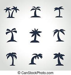vektor, fekete, pálma, ikon, állhatatos