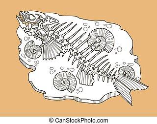 vektor, fische, mode, skelett, abbildung