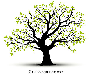 vektor, -, fjäder, träd, och, bladen