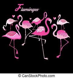 vektor, flamingos, gruppe