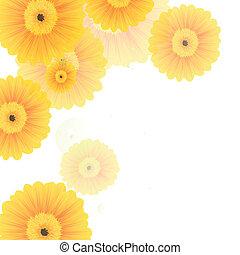 vektor, frühjahrsblumen
