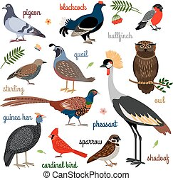 vektor, fugl, iconerne