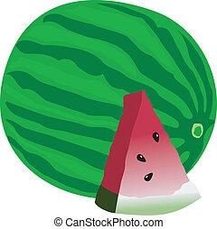 vektor, görögdinnye, ábra