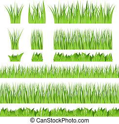vektor, gräs