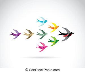 vektor, grupp, av, färgrik, svälja, birds., teamwork,...