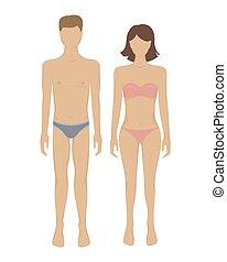 vektor, hím, női, body.