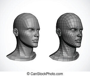 vektor, heads., kvinnlig