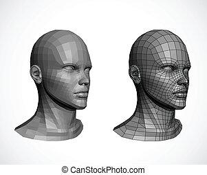 vektor, heads., weibliche