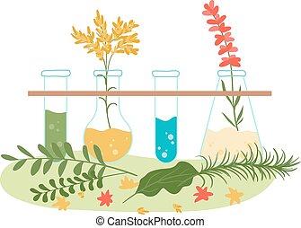 vektor, herbal, behandling, extracts, naturopathic, hälsa, ...