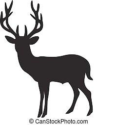 vektor, hjort