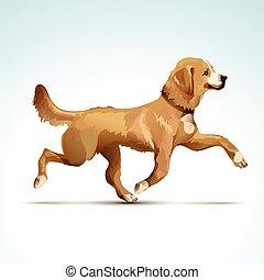 vektor, hund, apportierhund, labrador