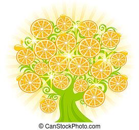 vektor, illustration, i, en, træ, hos, skiver, i, oranges.