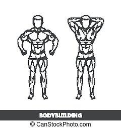 vektor, illustration, i, muscled, mand, krop, silhouettes., poser, athlete., duelighed, eller, bodybuilding, logo, begreb