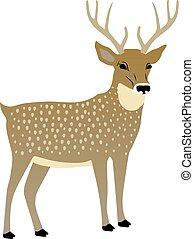 vektor, ilustrace, o, jeden, šikovný, deer.
