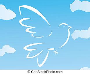 vektor, ilustrace, o, let, holub