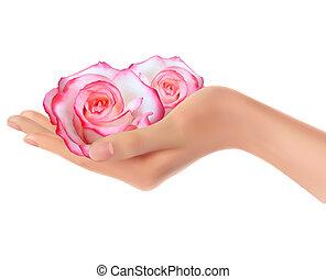 vektor, kéz, rózsaszín rózsa, két