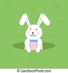 vektor, karikatúra, nyuszi, háttér., ábra, üregi nyúl, white out, zöld, durrantó, hole., lakás, csinos, húsvét, mód