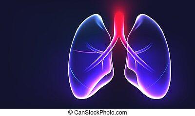 vektor, lungen, koerperbau, teil, abbildung