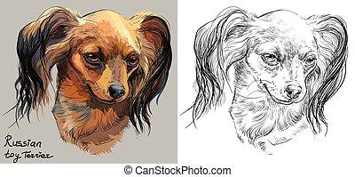 vektor, monochrom, porträt, zeichnung, hand, bunte, spielzeug, langhaarig, terrier, russische