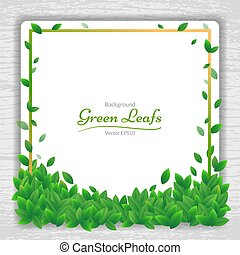 vektor, natur, hintergrund, banner, mit, grünes blatt, rahmen