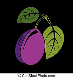 vektor, organický, ilustrace, Zralý, nach, lahodnost, Švestka, strava, List, jednoduchý, svobodný, ovoce, nezkušený, období, sklízet, zdravý, znak