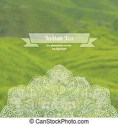 vektor, ozdobený, grafické pozadí, o, čaj plantá