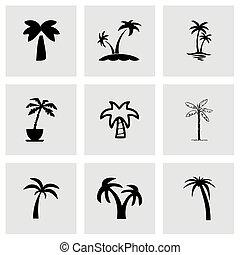 vektor, pálma, ikon, állhatatos