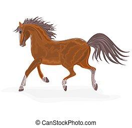 vektor, pferd, brauner