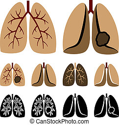 vektor, plíce, lidský, rakovina, ikona