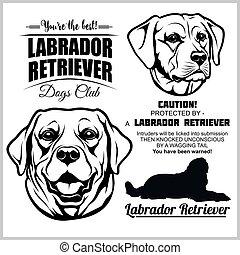 vektor, -, sæt, retriever, hund, labrador, white.