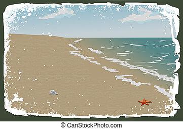 vektor, sandstrand