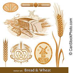vektor, satz, -, bread, und, weizen
