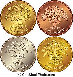 vektor, satz, britisch, geld, goldmünze, eins, pfund