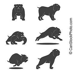 vektor, satz, hund, stier