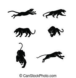 vektor, satz, panther