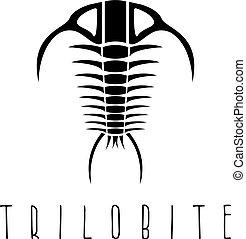 vektor, schablone, trilobite, fossil, ära, design, paleozoic...