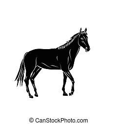 vektor, silhouette., horse., karikatur