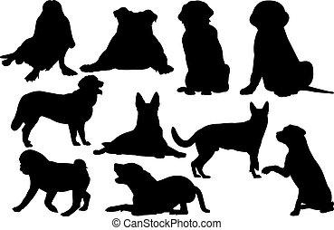 vektor, silhouette, hund, abbildung