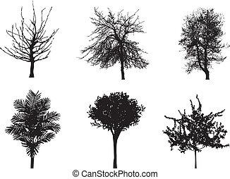 vektor, silhouetten, von, bäume