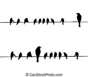 vektor, silhouettes, av, den, fåglar, på, tråd